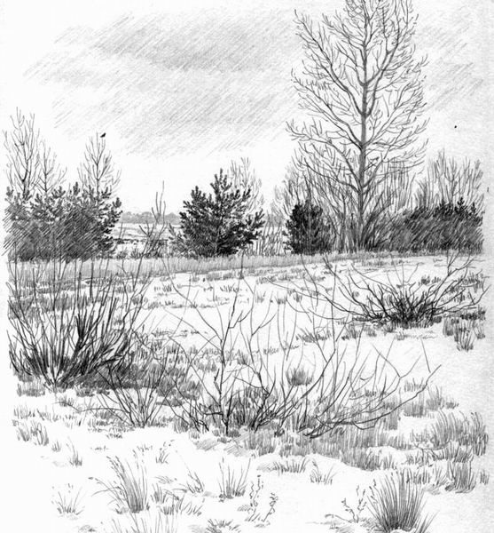 mm_64_Зимой 2